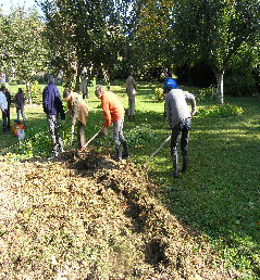 Le jardin du cr ateur for Jardin mandala